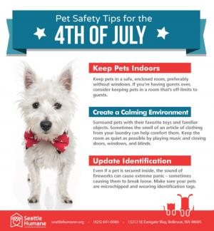 Make this Independence Day fun and SAFE for you and your pets. Big gatherings, loud noises, and brilliant fireworks are part of the celebration – but it can be  frightening for our pets. With planning and precaution, you can ensure this holiday is enjoyable for everyone.