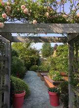 "An inviting ""Garden"" path in Scarborough. Photo courtesy of Mill Creek Garden Club."