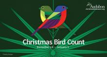 The National Audubon Society invites birdwatchers and people with backyard bird feeders to participate in the longest-running citizen science survey - the annual Audubon Christmas Bird Count on Saturday, December 14, 2019.