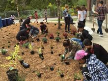 Jackson High School's Environmental Systems Design class and rain garden team creating a legacy. Photo courtesy of Everett Public Schools.