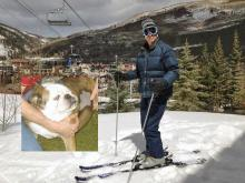 Mike Gold skiing at Vail with his smart dog. Photo courtesy of Mike Gold.