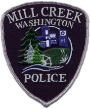 Mill Creek Police officers arrested a Mill Creek teenager for assaulting a 10-year-old boy and stealing his scooter on Saturday, August 5th at Westfield Park between 6:00 and 6:30 pm.
