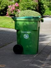 Waste Management Northwest hasn't picked up Mill Creek's garbage, recycling, and yard waste since Tuesday, July 24th because of a strike by Teamsters Local 117.