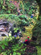 Rescue technicians responded to a water rescue emergency at Youngs Creek on Cedar Ponds Road on Saturday afternoon, September 28, 2019. A 26 year-old male reportedly went over the falls. The rescue team brought him up the ravine and he was transported to a local hospital in critical condition.